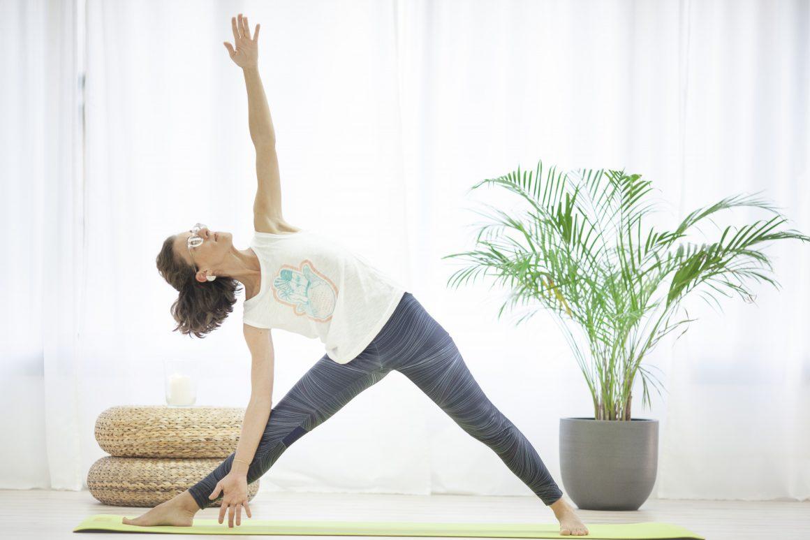 ¿Que es el Hatha Yoga?